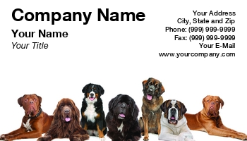 Dog Boarding Business Cards